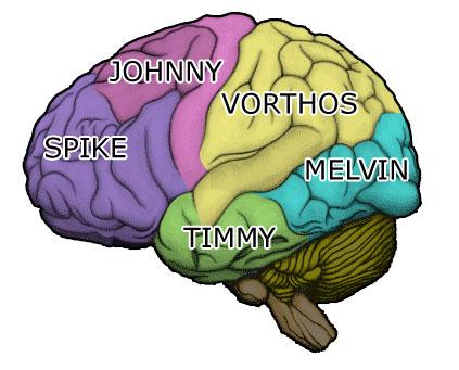 mm50_brain